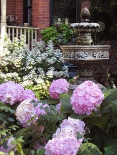 Hydrangeas surrounding water fountain. Beautiful.