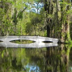 Tranquility by Brenda Bihlear - Buildings & Architecture Bridges & Suspended Structures ( water, oaks, reflections, trees, bridge, flowers, ...
