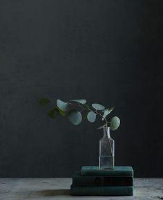 Quando il Decor incontra l'amore per la natura, quando il gusto incontra l'essenziale allora è il momento di parlare di vasi trasparenti in vetro.