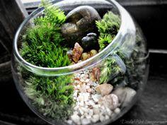 Miniature Terrarium Landscape in Glass Bowl: Garden In a Glass. $22.00, via Etsy.