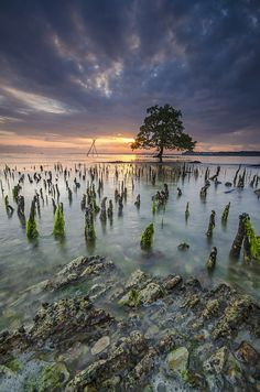 ::. Dream Island .:: by Ahmad Zulharmin Fariza on 500px