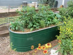 Making a self-watering horse trough planter. Everything should be self-watering,… Create self-watering horse trough pot. Everything should water itself, with … Garden Troughs, Trough Planters, Outdoor Planters, Diy Planters, Garden Planters, Planter Ideas, Galvanized Planters, Planter Boxes, Railing Planters