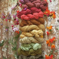 So excited about these new naturally dyed colours- our Australian merino wool is looking just beautiful in these new tones-all dyed by artisans in India using flowers from temples and festivals, native indigo and pomegranates and more. Our natural dyes from herbs, plant matter and food scrapes leaves nothing to waste and the used dye baths can be used to water food crops adding organic matter back to the soil and supporting communities in need. Thank you all for your support