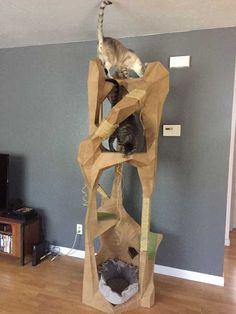 Post with 120883 views. Low Poly Cat Tower of Doom and Treachery Making Barn Doors, Old Barn Doors, Fold Down Work Bench, Cat Couch, Shuffleboard Table, Bunk Beds Built In, Cat Towers, Cat Room, Diy Headboards