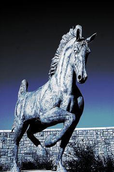 Horse statue in Saddlebrook Estates Argyle, TX
