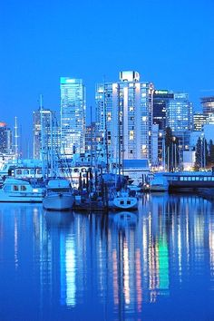 No filters, no Photoshop. This is the blue tone I get with a long exposure at twilight in this part of Vancouver. Some blue, in part, because I forgot to change the white balance from incadenscent. Vancouver Photography Access Our Site Much More Information http://storelatina.com/canada/travelling #canadabeaches #food #recipes #traveling