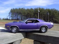plum crazy purple cuda