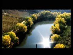 ▶ Vino de Rioja - 里奥哈葡萄酒 - Rioja Wine -