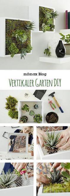 Vertikaler Garten für Innen selber machen, indoor gardening - leicht gemacht! Tolle DIY Idee! #gardeningindoor