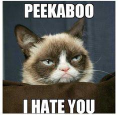 Peekaboo I hate you