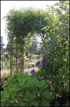 leafy garden arch