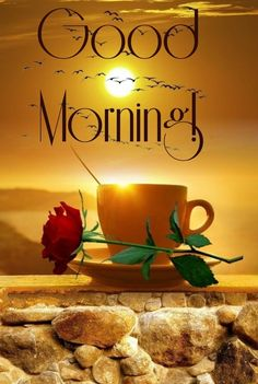 Good Morning Saturday Images, Good Morning Nature, Morning Thoughts, Good Morning Texts, Good Morning Coffee, Good Morning Good Night, Morning Pictures, Good Morning Wishes, Good Morning Quotes