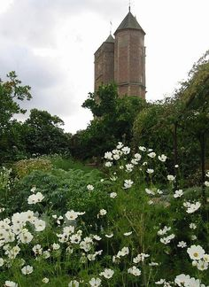 Sissinghurst - White Garden to tower - Cosmos White Sensation