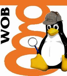 Team WOB Service Anoniem Geertruidenberg logo