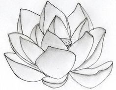 lotus+flower+tattoo+outline+(5).jpg (300×233)