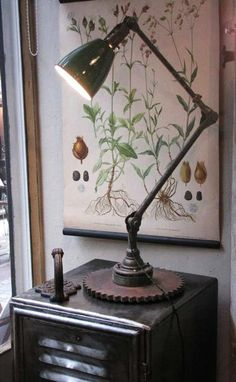 botanic.