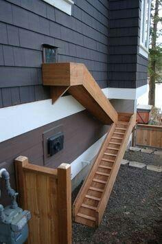 Doggy door with ramp.