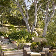 Spanish-style hacienda in Carmel Valley showcases inviting design Landscaping Around House, Hillside Landscaping, Landscaping With Rocks, Modern Landscaping, Front Yard Landscaping, Privacy Landscaping, Landscaping Ideas, Landscaping Edging, Style Hacienda