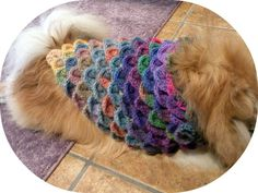 Free Crochet for Pets | Free Poncho, Shawl and Wrap Crochet Patterns