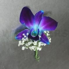 orchid boutonniere | Blue Orchid Boutonniere - W Flowers Ottawa