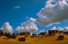 Monterey Yosemite: in viaggio fra le colline dorate della California