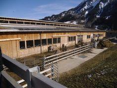 tierpark architektur - Hledat Googlem