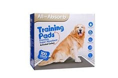 All Absorb Premium Training Pads Activated Carbon 22 by 23 Inch 100 Count *** To view further for this item, visit the image link. (This is an affiliate link and I receive a commission for the sales) Dog Training Pads, Best Dog Training, Female Dog Diapers, Dog Urine, Dog Shower, Dog Id Tags, Lavender Scent, Dog Hoodie, Outdoor Dog