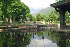 25 Photographs Of The World's Most Famous Gardens SHALIMAR BAGH SRINAGAR JAMMU AND KASHMIR INDIA