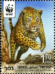 Israël Stamp