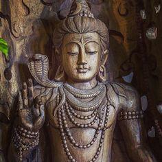 Shiva, é o Deus dos Yogis, aquele que destroi para construir algo novo. Aquele que transforma. Aquele que renova.