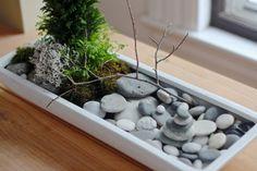 mini-jardin zen : pierre et verdure pour fraîcheur