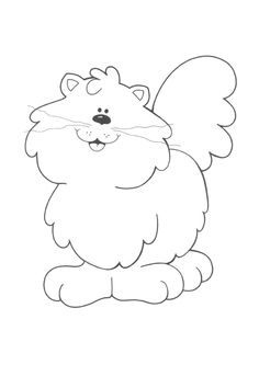 fluffy cat,