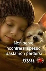 People want freedom quality high-life standards. Its crucial to show that women are free people are free that there is quality. Kahlil Gibran, Animals And Pets, Cute Animals, Common Quotes, Italian Phrases, Amor Animal, Positive Phrases, Guide Dog, Chihuahua Love