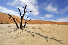 Arena of Death - Dead Vlei, Sossusvlei, Namibia | Flickr - Photo Sharing!