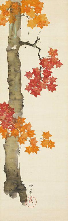 Maple Tree, by Sakai Hoitsu, Nomura Art Museum, Kyoto, Kyoto, Japan 楓図 酒井抱一筆