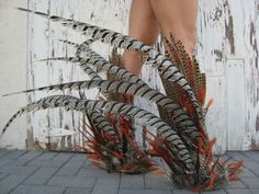 Not just feathers on her feet... an entire bird
