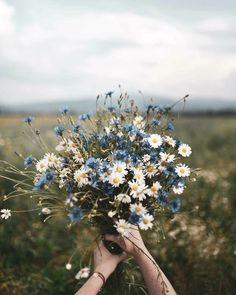 Blue and white floral bouquet photo by Dominika Brudny at Do.- Blue and white floral bouquet photo by Dominika Brudny at Dominika Brudny on Ins Blue and white floral bouquet photo by Dominika Brudny at Dominika Brudny on Ins… – - Colorful Flowers, Wild Flowers, Beautiful Flowers, Flowers Nature, Spring Flowers, Nature Plants, Boquette Flowers, Bunch Of Flowers, Art Nature