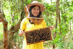 Peternakan Lebah di Subang