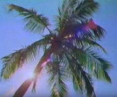 Beach Aesthetic, Summer Aesthetic, Aesthetic Vintage, Summer Dream, Summer Girls, Key West, Mermaid Hotel, No Ordinary Girl, H2o Mermaids
