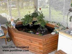 Like the idea of the indoor pond.