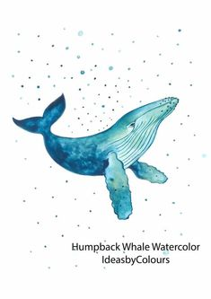 Whale Drawing, Whale Painting, Watercolor Whale, Watercolour Painting, Sea Life Art, Sea Art, Whale Illustration, Whale Art, Coastal Art