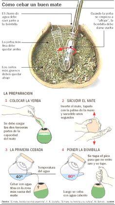 como preparar un buen mate - Yerba Mate. // me re sirve! Argentina Food, Argentina Travel, Argentina Recipes, Yerba Mate, Love Mate, Comprehension Activities, Natural Medicine, Diet And Nutrition, Drinking Tea