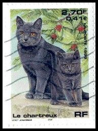 Timbres France chats Chartreux ====================== Image.=> http://wamiz.com/chats/chartreux-26 ========================= France 1999 - Nature de France - Chiens et chats Série => https://fr.pinterest.com/pin/121526889922336054/ ========================= Multicolore - Dentelé 13,5 Héliogravure Valeur faciale = 2,70 F Référence.Y&T.=.3283 Cotation.2016.=.1,25 €-0,50.€ ======================= Bonjour, pour les bijoux Gaby Féerie…