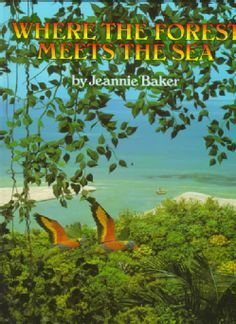 Where the Forest Meets the Sea - Jeannie Baker's lifelike collage illustrations…