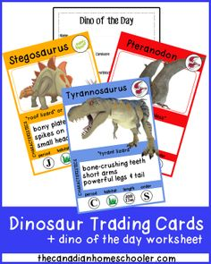 """Dinosaur Trading Cards - a fun way to learn dinosaur facts! (And a bonus """"dino of the day"""" worksheet!)"""