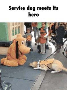 First he submits to his hero, then he kisses him...cute!!!