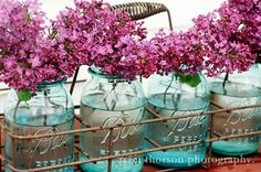 I love the aromatic smell of the lilacs in Spring. I will slow down my pace when I am near the lilac trees. They lift up my mood.