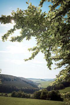 #Wander-Tipp: Strycktal - Paradies - Mühlenkopfschanze - Waldlehrpfad      #Willingen #Wanderung #Upland #Wanderweg #Sauerland #Outdoor |Foto: willingen.de