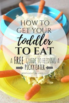 How To Get Your Toddler to Eat (a Free Guide to Feeding Your Picky Eater)