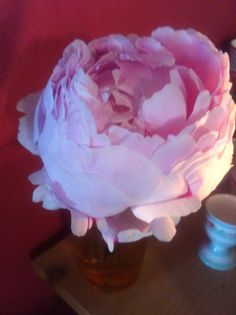 The last peony for this year- it's the most beautiful one! #uteschlegelflowers